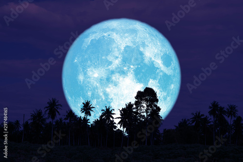 super full harvest moon on night sky back trees in the field Wallpaper Mural
