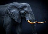 Widmowy obraz fantasy słonia afrykańskiego