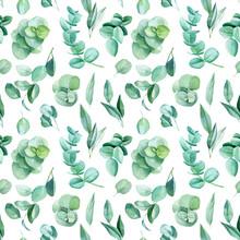 Beautiful Watercolor Illustration, Green Leaves Of Eucalyptus, Seamless Pattern