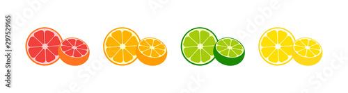 Pinturas sobre lienzo  Fresh Citrus Fruits vector icons collection
