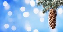 Fir Cone Hanging On Snow Covered Fir Branches Against Blue Bokeh Background. Winter Card.