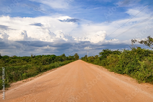 Photo  View of Transpantaneira Road leading to to cloudy horizon and framed by natural