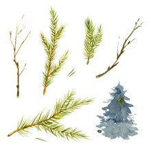 Watercolor Set Of Christmas-tree Branch And Prickles. Hand-drawn Illustration On The White Background