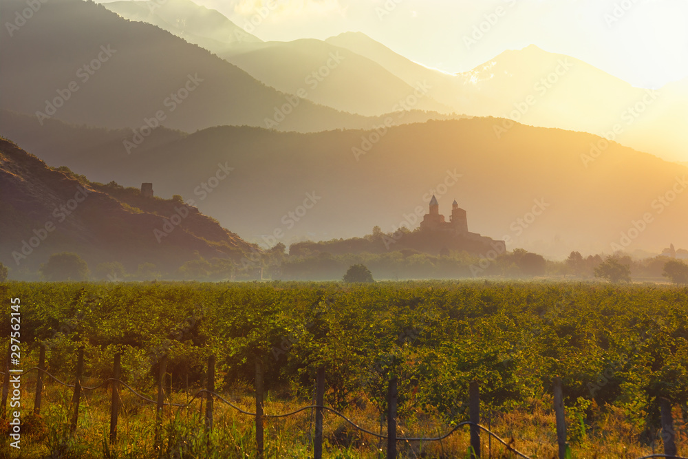 Fototapeta Scenic view of vineyards in the Kakheti region at sunrise against the background of the historic fortress of Gremi, country Georgia