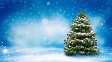 Beautiful Christmas Snowy Back...
