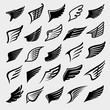 Wings set. Collection icon wings. Vector