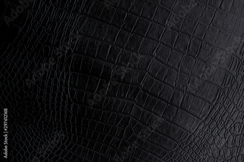 Fototapeta  Texture background of genuine Crocodile leather in black color.