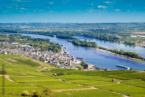 Valokuva  View from the Niederwald Monument over vineyards to Rüdesheim at the river Rhine