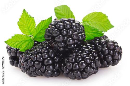 Fresh blackberry on white background - 297616379