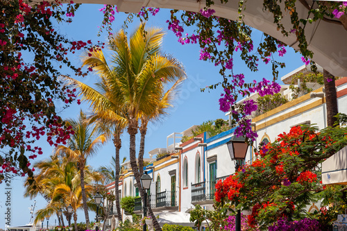 Colorful flowers blooming around houses and arches in Puerto de Mogán, Gran Canaria, Spain. It's called Venice of the Canary Islands.
