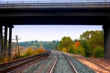 Train Tracks Under The Bridge....