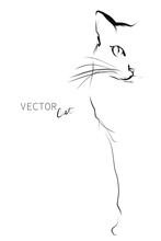 Hand-drawn Portrait Of Cat In Sketch Style. Vector