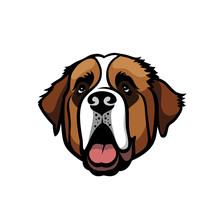 St. Bernard Dog - Isolated Vec...