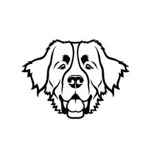 Bernese Mountain Dog - Isolated Vector Illustration