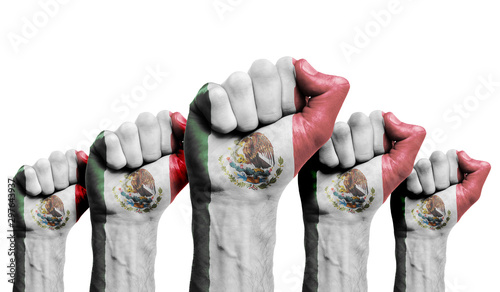 Photo A raised fist of a protesters painted with the Mexico flag