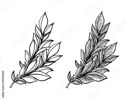 Hand sketched vector vintage elements ( laurels, frames, leaves, flowers, swirls, feathers) Wallpaper Mural
