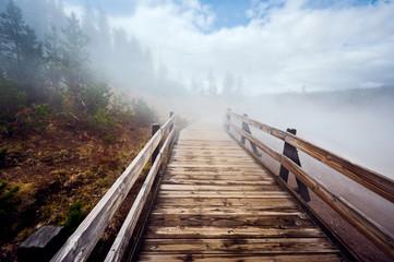 Bridge in the steam