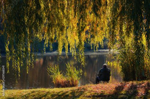 Foto auf AluDibond Grau Verkehrs Autumn landscape, a fisherman sits by a pond under a yellow willow tree
