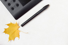 Graphic Tablet, Digital Stylus And Colorful Autumn Maple Leaf On A White Background With Place For Text. View From Above.
