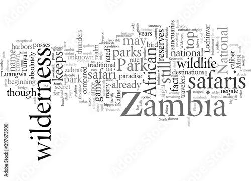 Experience Life At Zambia Wilderness Safari Canvas Print