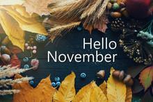 Hello November. Frame Of Autumn Decor Poster Card  Filter  Grunge Image