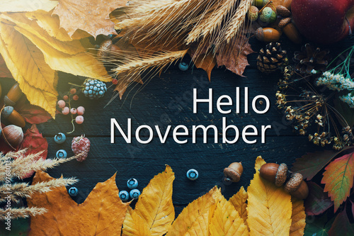 Photo sur Toile Papillons dans Grunge Hello november. frame of autumn decor Poster card filter grunge image