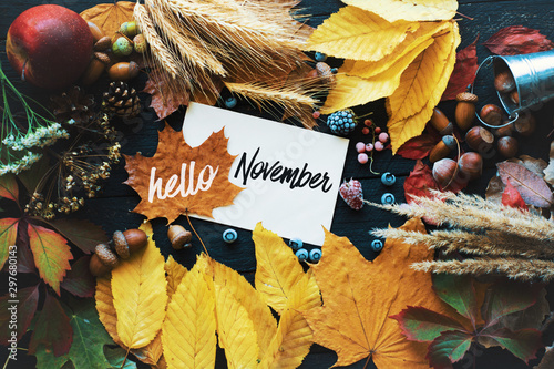 Foto auf Leinwand Schmetterlinge im Grunge Hello november. frame of autumn decor Poster card filter grunge image