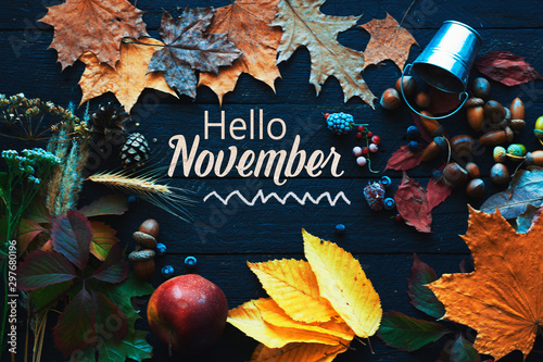 Fotobehang Vlinders in Grunge Hello november. frame of autumn decor Poster card filter grunge image