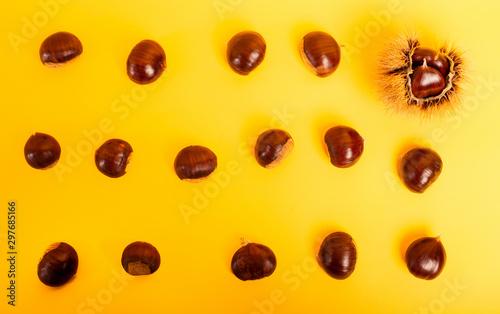 Fotografía  Stylish composition of chestnut on yellow background
