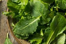 Raw Green Organic Baby Kale Su...
