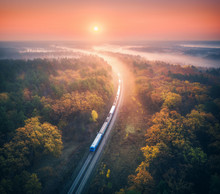Train In Beautiful Forest In F...