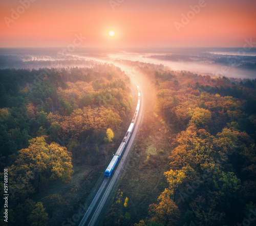 Fotomural  Train in beautiful forest in fog at sunrise in autumn