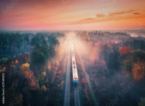 Pinturas sobre lienzo  Train in beautiful forest in fog at sunrise in autumn