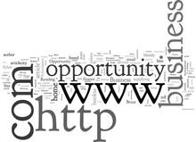 Business Opportunity Seeker Ex...