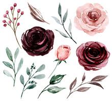 Set Watercolor Flowers Paintin...