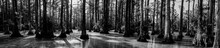 Black And White Panoramic Phot...