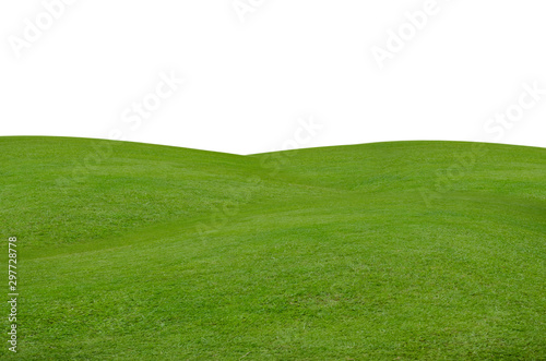 Tuinposter Gras Green grass field isolated on white background with clipping path.