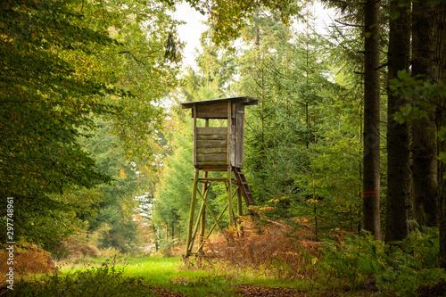 Fotografía Herbstwald im Münsterland