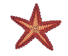 Vintage Hand Drawn Line Art Star Fish Engraved Color