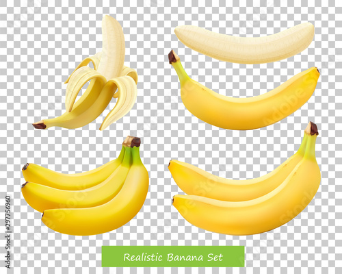 Set of different bananas Canvas-taulu