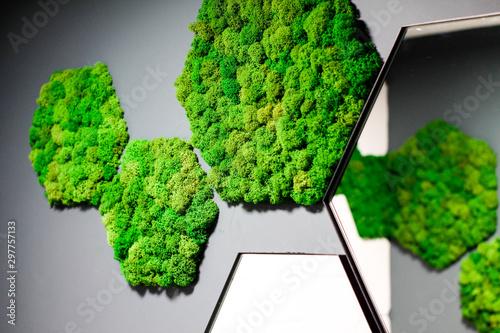 Obraz na plátně bathroom design with green moss