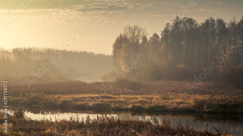Foto auf Gartenposter Wasserfalle Autumn morning foggy landscape. sad view of an overgrown narrow stream in a marshy area with a coastal lush dry reed and light forest in twilight haze in overcast weather