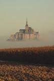 Fototapeta Paryż - mont saint michel nebel