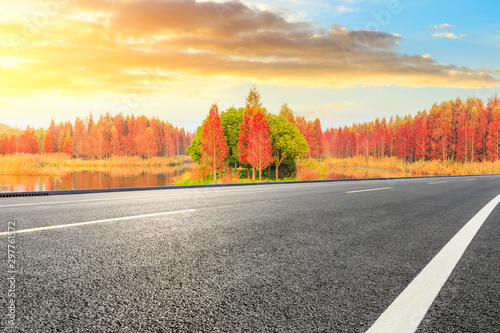 Foto op Canvas Zwavel geel Empty asphalt road and beautiful colorful forest landscape in the nature park