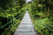 Hanging Bridge At Sarapiqui Ju...
