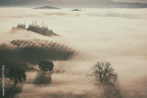 Foto auf Gartenposter Cappuccino Drowned in the fog