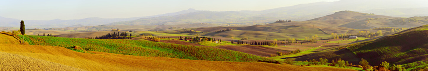 Wavy fields in Tuscany