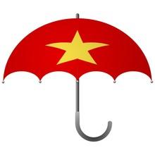 Vietnam Flag Umbrella