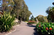 A Scene In The Royal Botanic Gardens In Sydney.