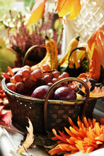 Autumn Decoration With Basket ...
